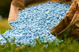 Як розрахувати кількість фосфорних добрив під озимі зернові культури на різних ґрунтах