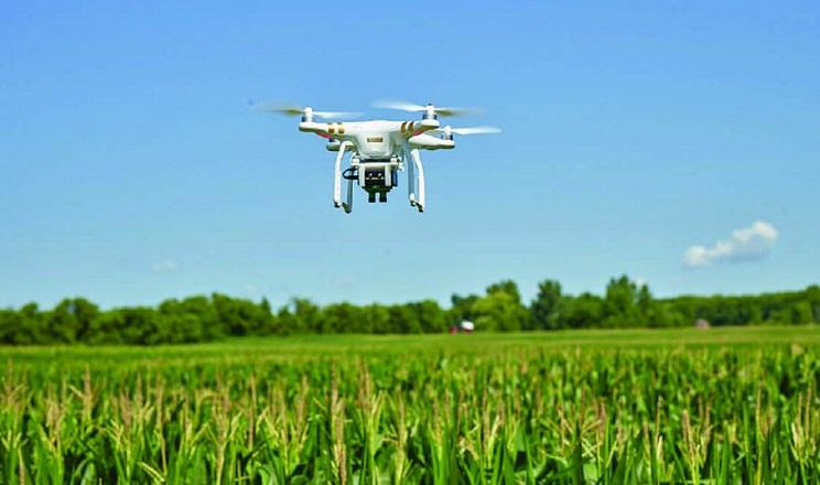 У світі набувають популярності дрони для внесення засобів захисту рослин