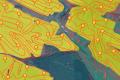 Держгеокадастр розширив доступ до даних про координати поворотних точок меж земельних ділянок