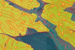 Держгеокадастр поповнив кадастрову карту новими інформаційними шарами