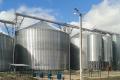 Україні не вистачає потужностей лінійних елеваторів на 25 млн тонн зерна