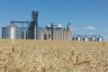 На Тернопільщині хочуть збудувати комбінат хлібопродуктів