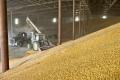 Технологія небулізації від Sojam дає змогу істотно збільшити оборотність зерна на елеваторі