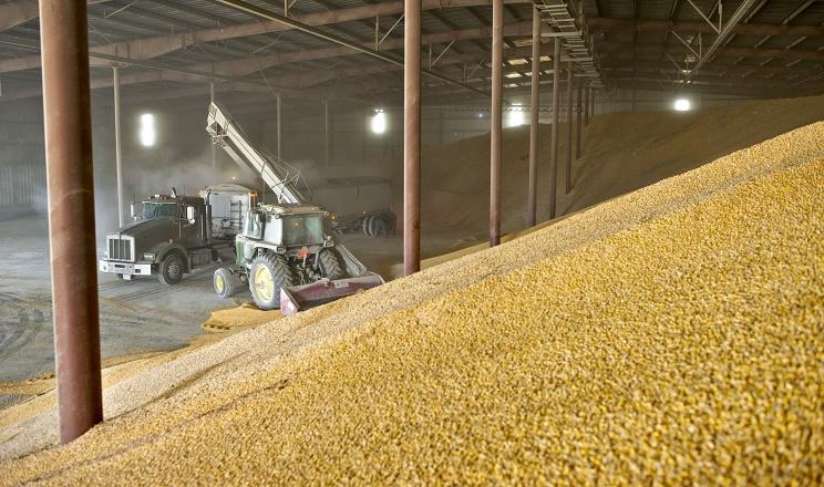 Оболонка безкаркасного ангара може не витримати зерновий насип висотою понад 1-1,5 м