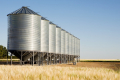 Елеватори G.R. Agro заготовили понад 65 тис. тонн зернових