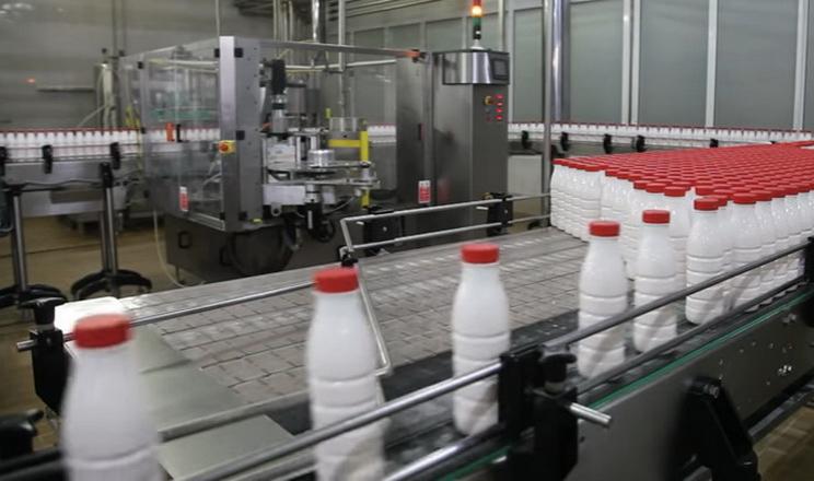 «Молочний альянс» планує збільшити частку молока від господарств до 80%