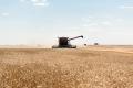 Вітчизняні аграрії зібрали близько 27 млн тонн зерна нового врожаю