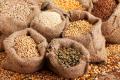 На 1 лютого на елеваторах і підприємствах переробки зберігалося 8,8 млн. тонн зерна