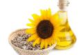 Виробництво соняшникової олії зросло на 17%