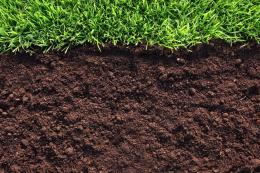 Стратегія ґрунтообробітку поліпшила утримання вологи, – досвід ARG Group