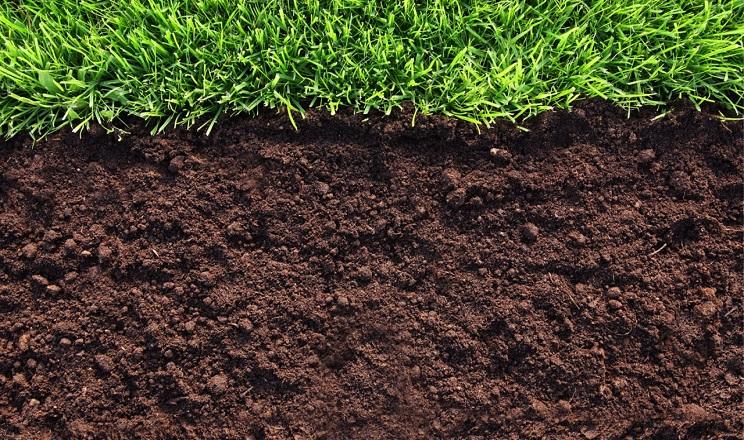 Терміни щілювання впливають на накопичення вологи в ґрунті