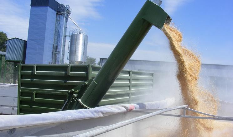 Risoil Terminal з початку сезону відвантажив на експорт понад 200 тис. тонн пшениці