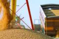 «Укрзалізниця» відкрила власний зерновий термінал
