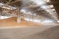 Елеватори ДПЗКУ прийняли на зберігання понад 200 тис. тонн зерна