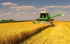 Цього року темпи жнив та урожайність зернових істотно відстають від минулорічних