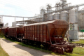 Через транспортний колапс на залізниці аграрії втрачають по 800 грн на тонні зерна, - Леонід Козаченко