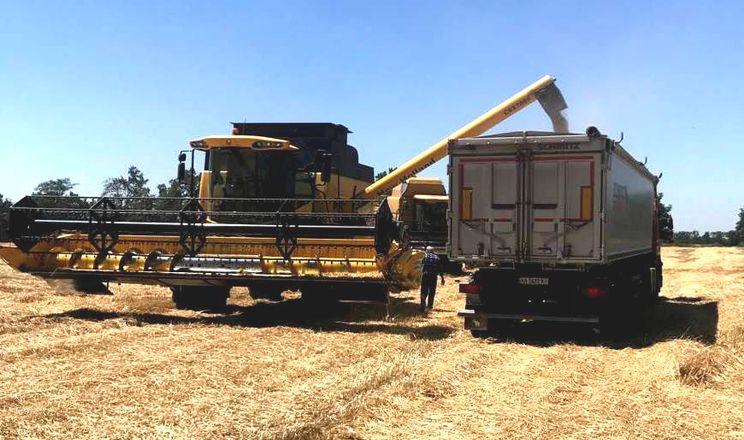 «Прометей» отримав високу врожайність озимих зернових