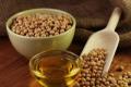 Україна наростила експорт соєвої олії більш ніж на 81%