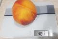 Агрофірма «Ольвія» почала вирощувати персики вагою до півкілограма