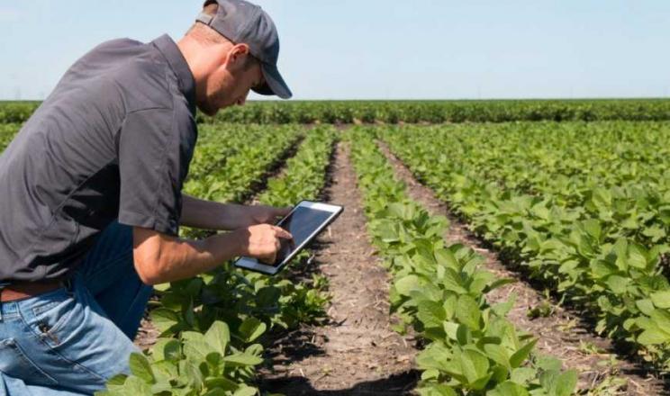 Платформу для цифрового землеробства компанії BASF відзначили нагородою