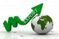 «Система управління експортними продажами» може спростити вихід агровиробників на світовий ринок