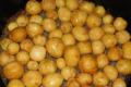 Фомозна гниль збільшує втрати картоплі під час зберігання