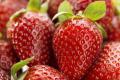 Насичення води киснем збільшило врожай полуниці