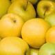 Яблука можна експортувати за допомогою інтернет-біржі