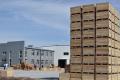 Великий виробник українських преміальних яблук вважає Південно-Східну Азію і Близький Схід найперспективнішими ринками