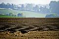 У Верховній Раді зареєстрували законопроєкт щодо заборони відчуження земель сільгосппризначення