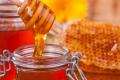 Експерт застерігає від великої кількості підробок акацієвого меду на ринку