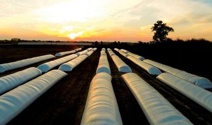 Пирятинський елеватор минулого сезону заклав у рукава 10 тис. тонн зерна