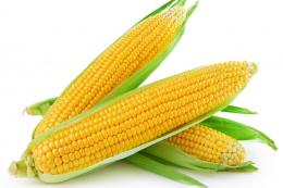 Ф'ючерси на кукурудзу продовжують падати в ціні