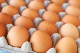 За рік курячі яйця подешевшали більш ніж на 20%