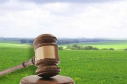 На Запоріжжі відсоткова ставка за результатами торгів перевищила 110% від НГО земельної ділянки