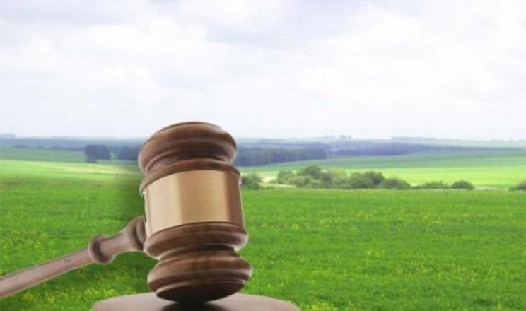 Інститут переважного права стане захистом для агровиробників, - KSE