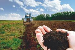 В Україні за чотири роки стало на 133 тис. менше особистих селянських господарств