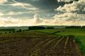 Нова інформаційна платформа сформувала найбільшу в Україні електронну базу оголошень з продажу прав оренди на землю