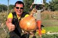 Найбільша в Україні цибулина важить 1,8 кг