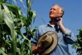 Аграрний підрозділ Bayer впроваджує нову організаційну структуру