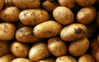 Україна за жовтень імпортувала картоплі більше, ніж будь-коли за рік