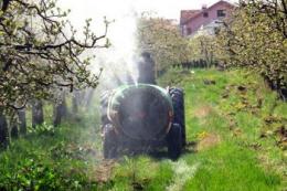 Фенопрогнозна система захисту яблуні увійшла до 10 найбільших наукових досягнень року