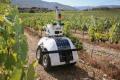 Наробивши помилок, фермери встановлюють автоматику