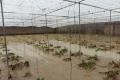Дощем пошкоджено понад 200 га іспанських теплиць