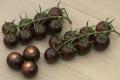 Фіолетові томати номіновані на здобуття премії Fruit Logistica