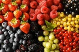 Експертка назвала найефективніші канали збуту фруктів та ягід