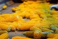 «Агро-С» збільшив потужності зі зберігання і сушіння кукурудзи