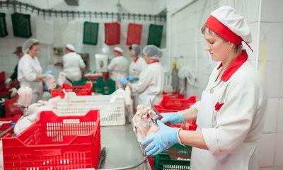 Торік виробництво продукції тваринництва агропідприємствами вперше з 2007 року стало збитковим