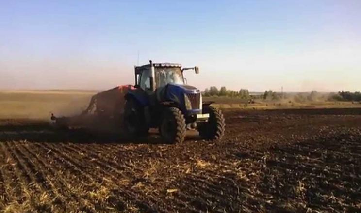 Після посушливого року у поверхневому шарі ґрунту утворюється прошарок