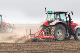В Україні ярими зерновими засіяно 9% прогнозованих площ